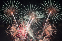 Fireworks. Amazing fireworks in the sky in the night Royalty Free Stock Images
