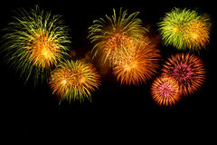 Fireworks. A beautiful fireworks for background Stock Photography