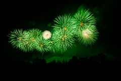 Fireworks. A beautiful fireworks for background Stock Images