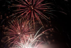 Fireworks. Beautiful fireworks on the black sky Stock Images