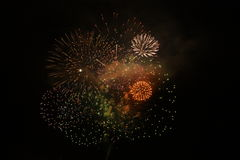 Fireworks. Beautiful fireworks in the dark night Royalty Free Stock Image