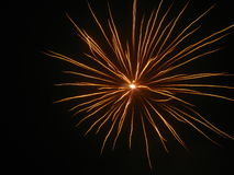 Fireworks. Beautiful fireworks in the dark night Stock Photos