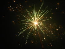 Fireworks. Beautiful fireworks in the dark night Royalty Free Stock Photos
