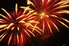 Fireworks. Beautiful fireworks on the dark night sky stock image