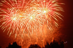 Fireworks. Beautiful fireworks on the dark night sky Royalty Free Stock Image