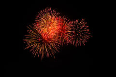 Fireworks. Royalty Free Stock Images