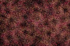 Fireworks. Stock Image