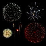 Fireworks in a black background Stock Image