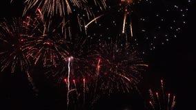 Fireworks on black background stock video