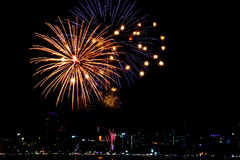 Fireworks on the black sky background Royalty Free Stock Image
