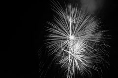Fireworks black and white. Fireworks display photographed in black and white Stock Photos