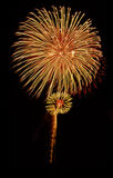 Fireworks bloom. Timed exposure of a fireworks display showing flowerlike bloom of colourful fireworks Stock Images