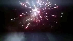 Fireworks bloom stock video footage