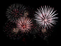Fireworks. Brightly Colorful Fireworks isolated black background. New Year celebration fireworks Royalty Free Stock Photos