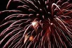Fireworks burst. Burst of fireworks, red and white highlights Royalty Free Stock Images