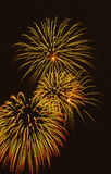 Fireworks burst. 3 bursts of fireworks with yellow, red and green hightlights Stock Photo