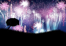 Fireworks bursting in field. Colorful fireworks exploding in the region country Royalty Free Stock Photography