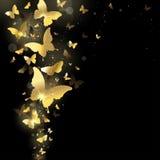 Fireworks of butterflies. Fireworks of gold butterflies on a dark background Stock Image