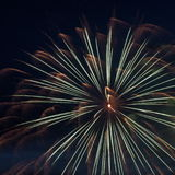 Fireworks For Canada Day Royalty Free Stock Photos