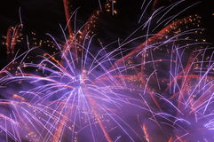 Fireworks. Royalty Free Stock Photo