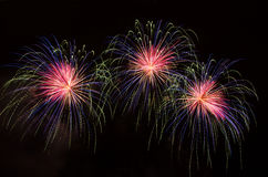 Fireworks. Celebrating the New Year with colorful fireworks Royalty Free Stock Images