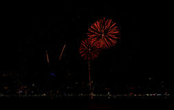 Fireworks celebration. On dark sky background Stock Image