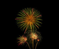 Fireworks celebration Stock Images