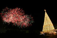Fireworks and Christmas tree. In foreground stock photos