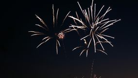 Fireworks on the city day holiday, big bursts of salute on the night sky.  Royalty Free Stock Image