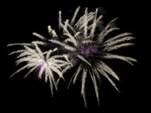 Fireworks Close-up Royalty Free Stock Photo