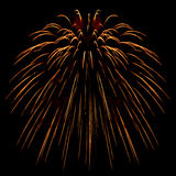 Fireworks . Royalty Free Stock Image
