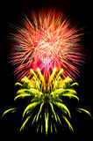Fireworks . Royalty Free Stock Photo