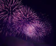 Fireworks. Colorful fireworks on dark sky royalty free stock images