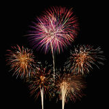 Fireworks. Colorful fireworks in the night sky Royalty Free Stock Photography