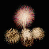Fireworks. Colorful fireworks in the night sky Royalty Free Stock Photos