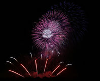 Fireworks. Colorful Fireworks scene at night Stock Photos