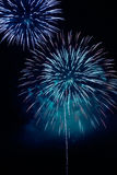 Fireworks on a dark background Royalty Free Stock Photography