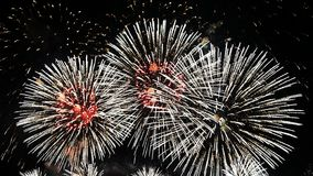 Fireworks in the dark Stock Photos