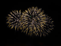 Fireworks in the dark sky Royalty Free Stock Photo