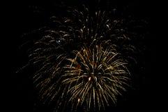 Fireworks  in dark sky Stock Images