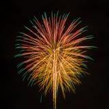Fireworks in the dark sky Royalty Free Stock Image