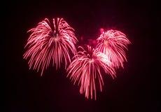 Fireworks in the dark sky Stock Photography