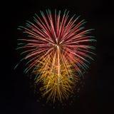 Fireworks in the dark sky Stock Image