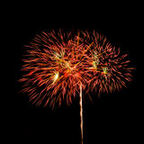 Fireworks. The disintegration of fireworks Stock Images