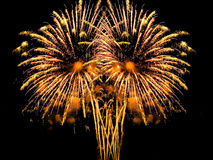 Fireworks display. Vibrant colors on black. Fireworks series Stock Photography