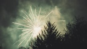 Fireworks Display Above Trees Stock Photography