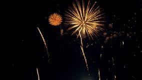 Fireworks display. Close-up. Fireworks display. Colourfull fireworks 4K
