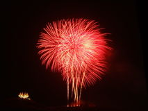 Fireworks. Display  Coconut treenDisplay of  and a sea of lanternsnGorgeous Stock Photo