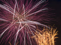 Fireworks display. Colorful fireworks against black sky Royalty Free Stock Photography