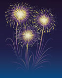 Fireworks. Fireworks display in the sky Stock Images